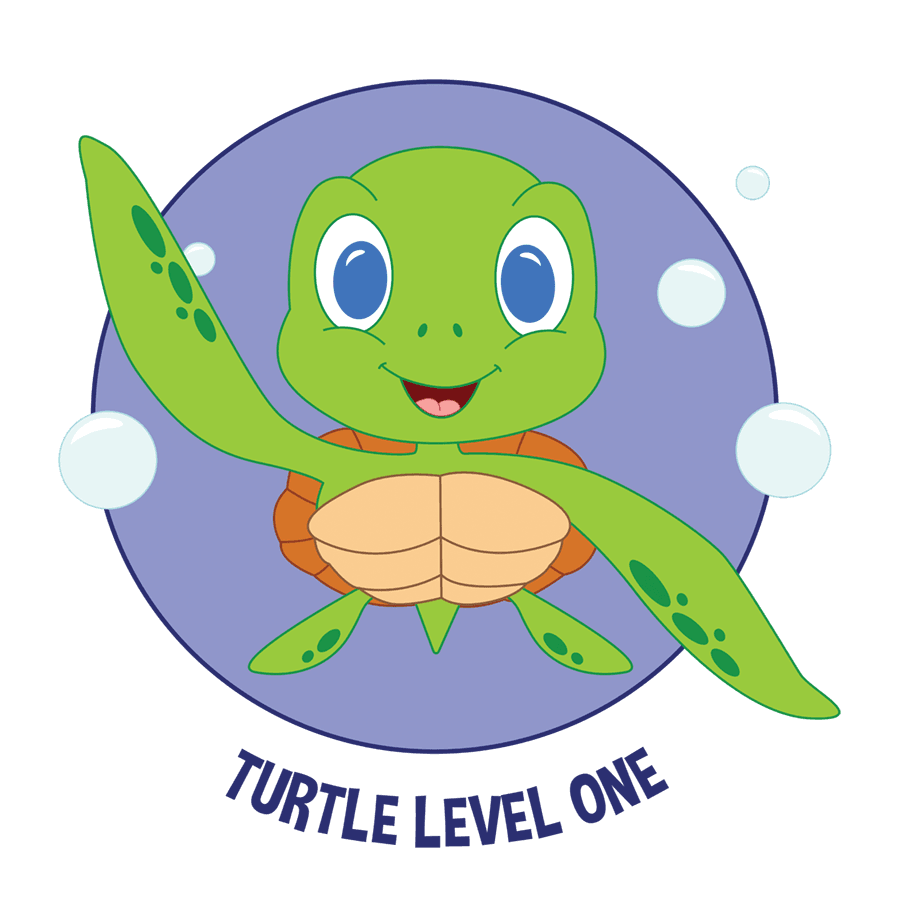 turtle Swim Level